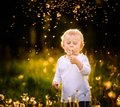 Happy small caucasian child blowing dandelion seeds Royalty Free Stock Photo