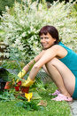 Happy smiling middle age woman gardening offsets the flowers in a pot Royalty Free Stock Image