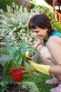 Happy smiling middle age woman gardening offsets the flowers in a pot Stock Images
