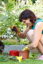 Happy smiling middle age woman gardening offsets the flowers in a pot Royalty Free Stock Photo