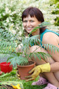 Happy smiling middle age woman gardening offsets the flowers in a pot Royalty Free Stock Photos