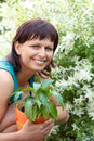 Happy smiling middle age woman gardening offsets the flowers in a pot Stock Photo