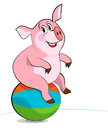 Happy smiling pig exercising with a pilates ball Stock Images