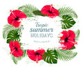 Happy summer holidays frame with red flowers and tropical leaves