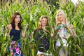 Happy teenage girls in a corn field Royalty Free Stock Image