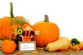 Happy thanksgiving card with scarecrow and harvest vegetables Royalty Free Stock Photography