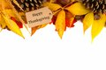 Happy thanksgiving gift tag with colorful leaves border over white of and pine cones isolated on Royalty Free Stock Photo