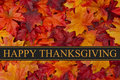 Happy Thanksgiving Greeting Royalty Free Stock Photo