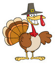 Happy thanksgiving pilgrim turkey bird Stock Photo