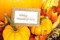 Happy thanksgiving tag with pumpkins and autumn decor over white Royalty Free Stock Images