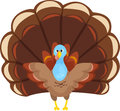 Happy thanksgiving turkey vector illustration of a with his wings outstretched Royalty Free Stock Photography