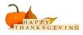 Happy Thanksgiving Wooden Bloc...