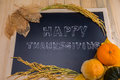 Happy thanksgiving word cloud on a vintage slate blackboard autumn fruit for autumn nature fall fruit wood Stock Photos