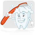 Happy tooth Brushing Royalty Free Stock Image