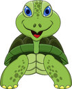 Happy tortoise cartoon Stock Photography
