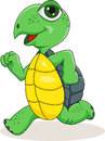 Happy turtle cartoon running Stock Images