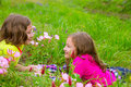 Happy twin sister girls playing on spring flowers meadow lying Royalty Free Stock Photo
