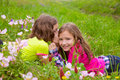 Happy twin sister girls playing whispering ear in meadow on spring flowers Stock Image