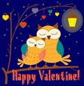 Happy valentine card or illustration two owls in the night Stock Images