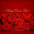 Happy valentine s day red roses Stock Photo