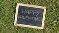 Happy valentine written on a chalkboard in the nature Stock Image