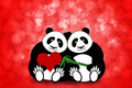 Happy Valentines Day Panda Couple Hearts Bokeh Royalty Free Stock Photo