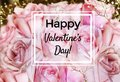 Valentine`s Greeting Card with Roses Flowers Background Royalty Free Stock Photo