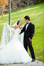 Happy wedding couple park sunny day Royalty Free Stock Image