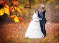 Happy wedding shot bride groom park Royalty Free Stock Photography