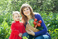 Happy woman and baby with vegetables harvest Stock Images