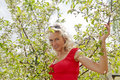 Happy woman on cherry tree pretty young standing the Royalty Free Stock Image