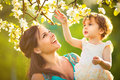 Happy woman and child in the blooming spring garden.Child kissi Royalty Free Stock Photo