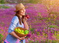 Happy woman eating apple cute girl holding in hands basket with fresh ripe apples having fun on pink floral field harvest season Royalty Free Stock Image