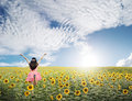 Happy woman jump in sunflower fields and blue sky Royalty Free Stock Photo