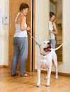 Happy woman taking dog for a walk white focus on Royalty Free Stock Photo