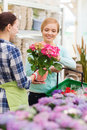 Happy women choosing flowers in greenhouse Royalty Free Stock Photo