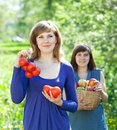 Happy  women with  harvest Stock Photo
