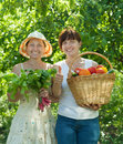 Happy women with  harvested vegetables Stock Image