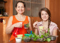 Happy women with  seedlings Stock Images