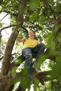 Happy young boy sitting on tree branch low angle view of Royalty Free Stock Photography