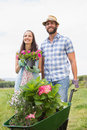 Happy young couple gardening together on a sunny day Stock Photography