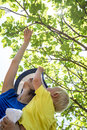 Happy young mother exploring nature with her baby boy showing hi him fig fruit on beautiful leafy green fig tree on a sunny summer Stock Photography