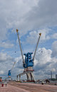 Harbour cranes old in rotterdam Royalty Free Stock Photography