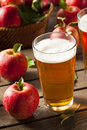 Hard apple cider ale ready to drink Royalty Free Stock Photography