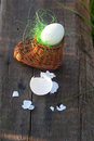 Hard boiled egg in the small toy clog rich artificial grass Royalty Free Stock Photos