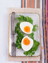 Hard boiled eggs with parsley on a plate Stock Images