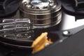 Hard disk drive head closeup Royalty Free Stock Photo