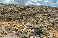 Hard plastic garbage decomposition. Pollution from the consumer society. Royalty Free Stock Photo