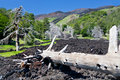 Hardened lava flow on green slope of Etna, Sicily Royalty Free Stock Photography