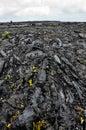 Hardened lava rock on hawaii island Stock Image